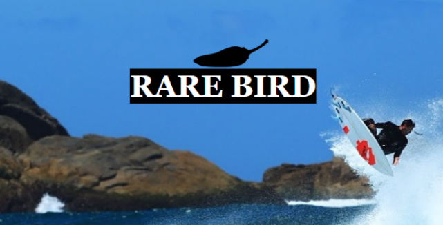 Top 10 de Best-Sellers de 2017: #1 Rare Bird da Chilli Surfboards