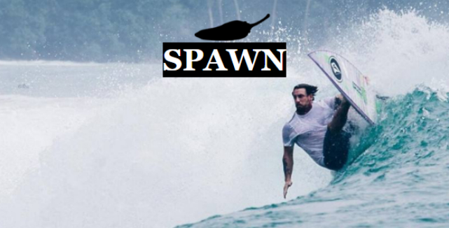 Top 10 de Best-Sellers de 2017: #6 Spawn da Chilli Surfboards